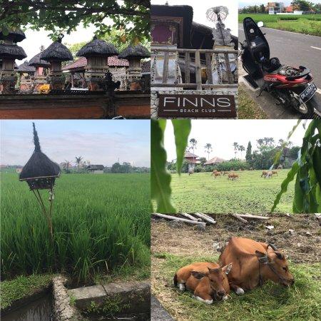Kerobokan, Indonesia: photo0.jpg