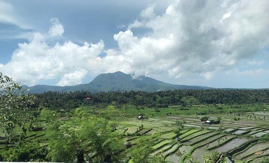 Kerobokan, Indonesia: photo1.jpg
