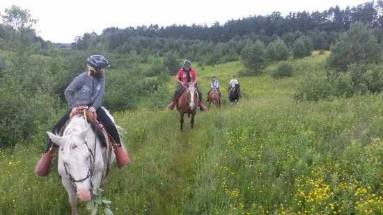 Windermere, แคนาดา: Custom trail rides for riders of all abilities