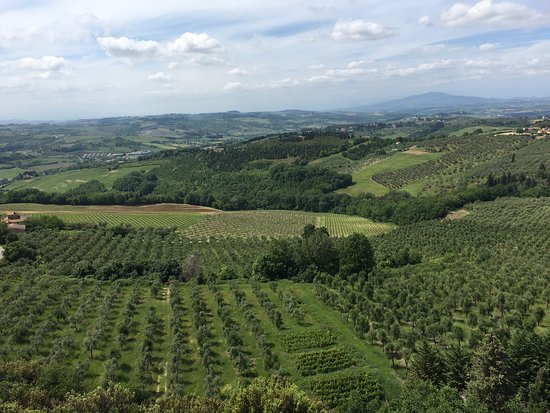Montespertoli, Italy: photo2.jpg