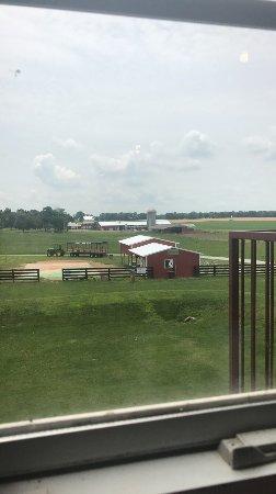 Chaney's Dairy Barn: photo1.jpg