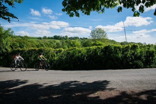 Devon Cycling Holidays