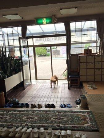 Odate, Япония: ふるさわ温泉の看板娘、 温ちゃん❗️ その可愛らしさわ反則?