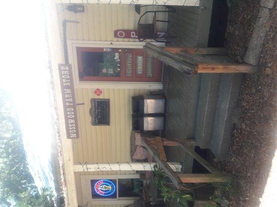 Micanopy, FL: 20170505_114719_large.jpg