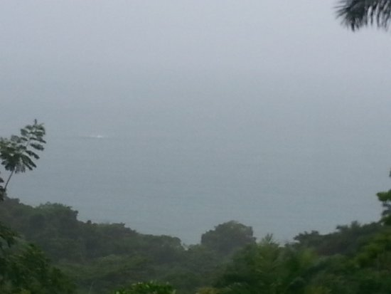 Barba Roja Restaurant: Delicious meal and lovely, rainy day view at Barba Roja!