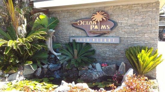 Ocean Palms Beach Resort: P_20170528_101832_large.jpg