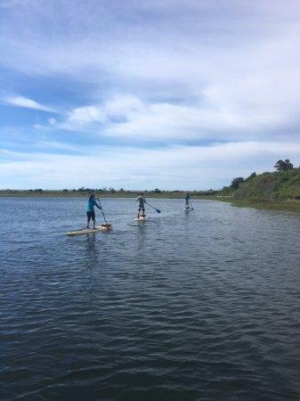 Aloha Paddle