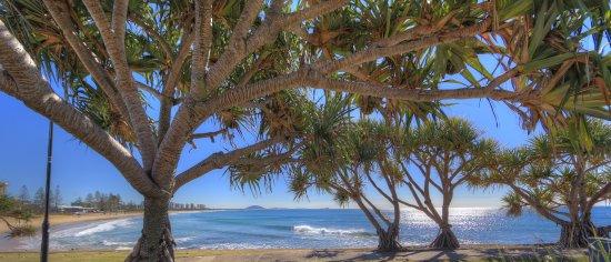 Alexandra Headland Beach & Surf Club