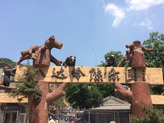 Yanqing Badaling Bear Park : 熊乐园