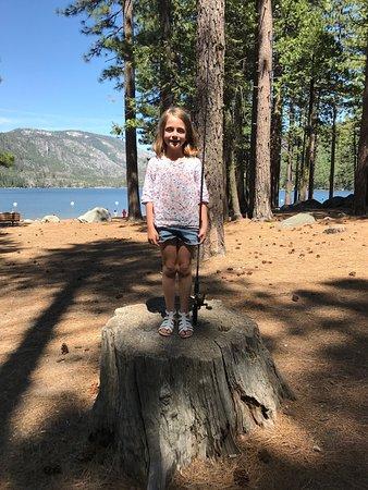 Pinecrest, CA: photo1.jpg