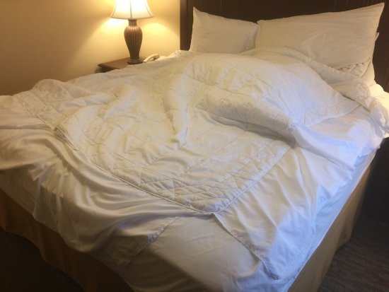 Homewood Suites by Hilton San Diego-Del Mar: Just double check what you're covered on your bed! They use the bed-skirt as the comforter on to