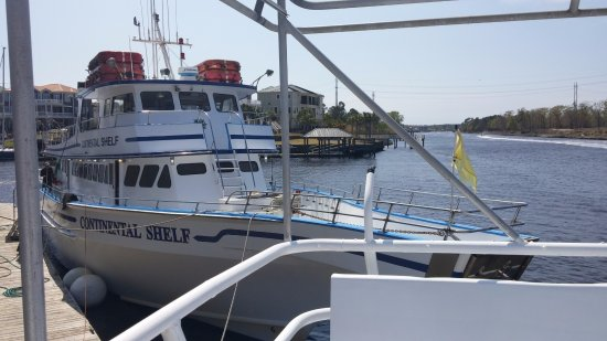 Voyager Fishing Charters Dolphins 2