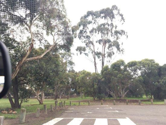 Yarrambat Park