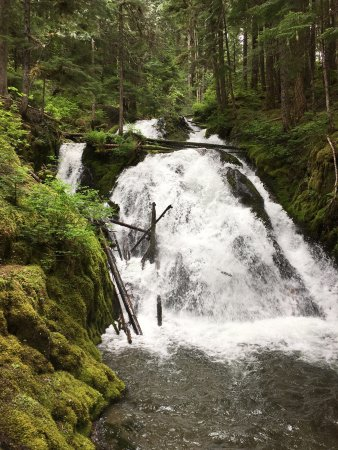 Mount Hood National Forest: photo2.jpg
