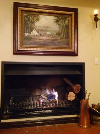 Budmarsh Country Lodge: Fireplace in room