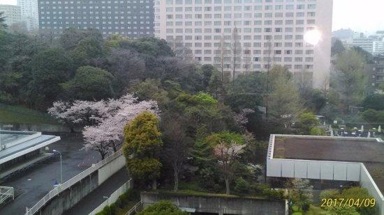 Imagen de Keikyu EX Inn Takanawa