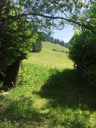 St. Kathrein am Offeneg, Austria: photo1.jpg