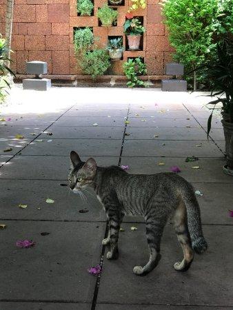 Belmond La Residence d'Angkor: photo2.jpg