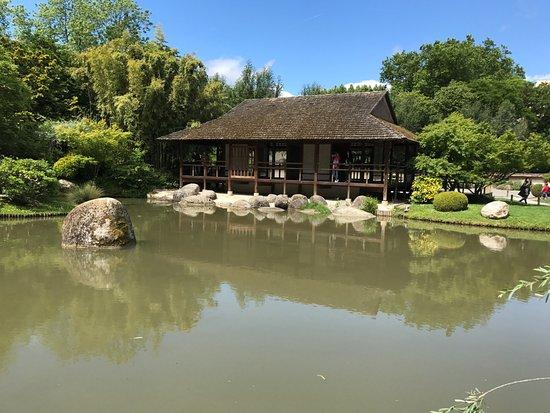 Jardin japonais photo de jardin japonais toulouse for Jardin 7 17
