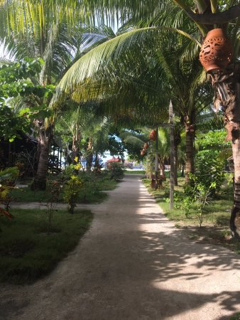 Scuba Junkie Mabul Beach Resort: Pathway from restaurant area to the dock. Rooms are to the left of the photo.