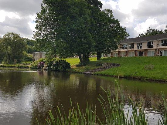 The Inn on the Lake: 20170605_084009_large.jpg