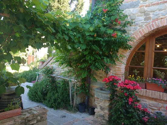 Vicchio, Italia: IMG_20170605_092558045_large.jpg