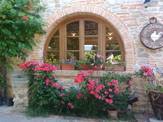 Vicchio, Italia: IMG_20170605_092552505_large.jpg