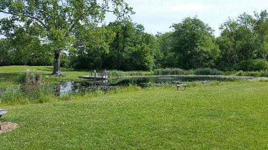 Goshen, OH: Pond