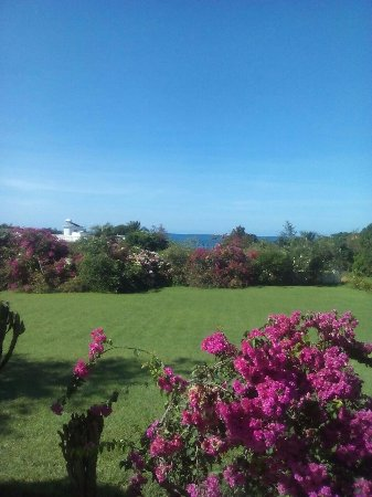 """""""Nuestra Casa"""" Guesthouse : The view from our room looking down towards Billys Bay beach"""