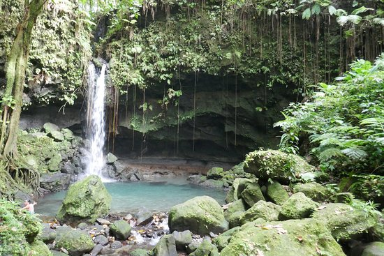 Emerald Pool Nature Trail: Baden Unter Wasserfall   Natur Pur