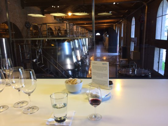 Ampora Wine Tours: Our tasting at Terraza