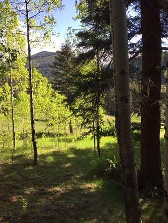 Tererro, NM: View from porch of Manana Cabin