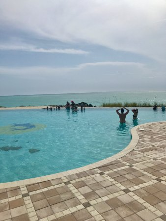 Bimini Sands Resort and Marina: Pool