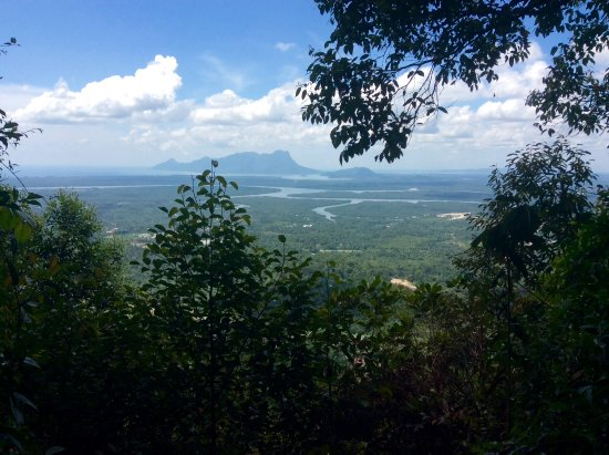 Kubah National Park: The view from the observation tower