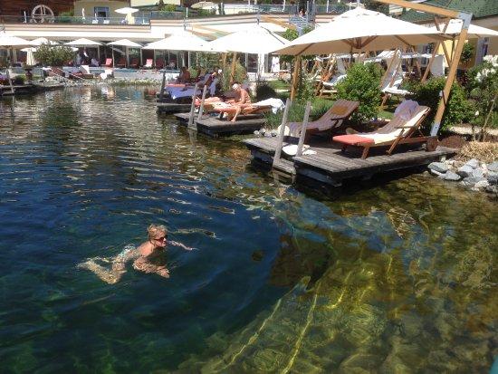 Schwimmteich natur pur bild von wellnesshotel jagdhof for Schwimmteich natur