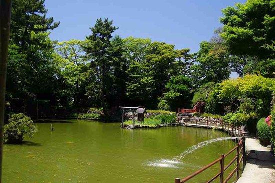 Hisaizu Shrine: 木々に囲まれた池