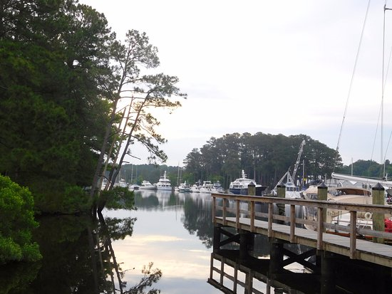 Chesapeake, VA: I love to look at the boats along the canal.