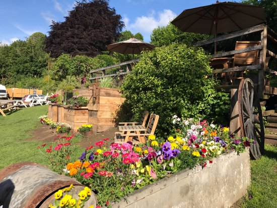 Freshford, UK: Fantastically renovated garden! And a retro ice-cream tricycle too :)