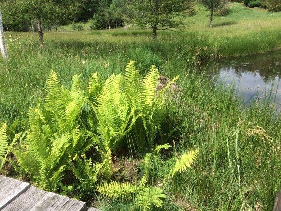 Les Jardins Sothys : photo1.jpg