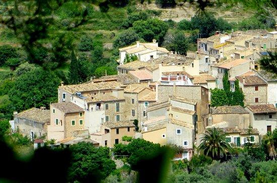 Blick auf den Ort Estellencs