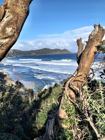 South Cape Bay Walk