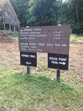 Pipiwai Trail (Haleakala National Park, HI): Top Tips