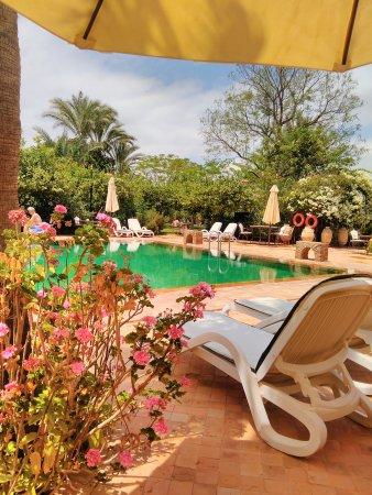 Hotel Dar Zitoune: IMG_20170529_154829_large.jpg