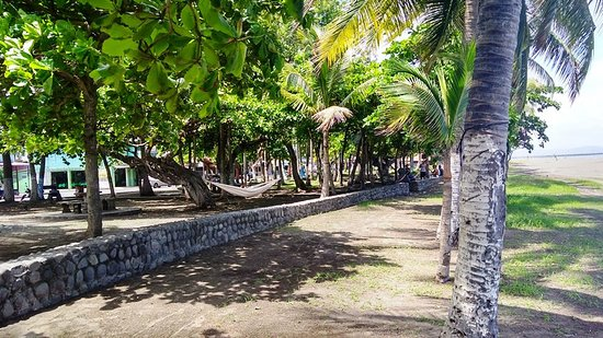 Puntarenas Bölgesi, Kosta Rika: The park along Puntarenas Beach is a shady break on a sunny day.