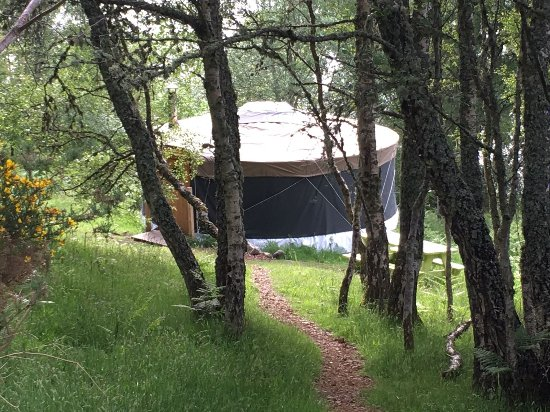 Pancakes for breakfast - Picture of Black Isle Yurts, Rosemarkie ...