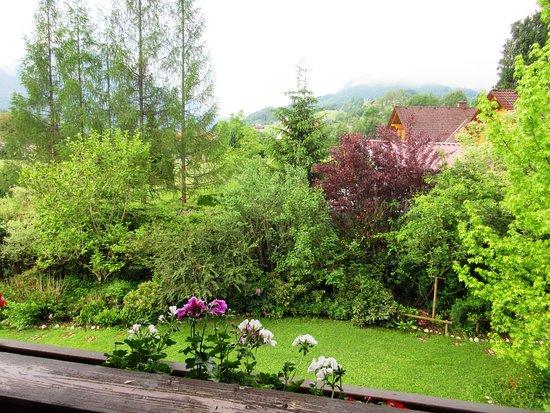 Bilde fra Sankt Gallen