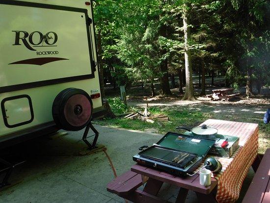 Lock 30 Woodlands RV Campground Resort : Campsite #28 photos.