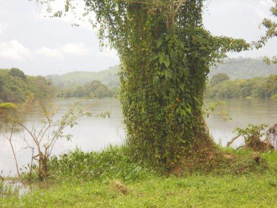 San Carlos ภาพถ่าย