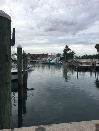 Fort Pierce Lady Deep Sea Fishing: photo4.jpg