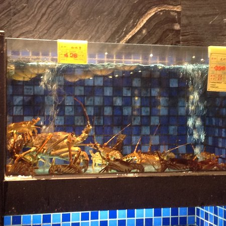 ShunFung Seafood Restaurant (Wangfujing): Prices on the walls of the aquarium.